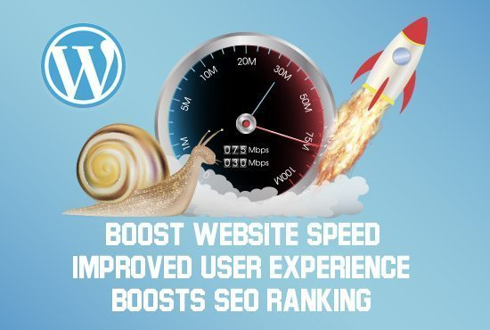 Wordpress speed optimisation service